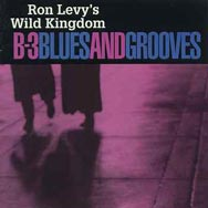 B 3 Blues And Grooves