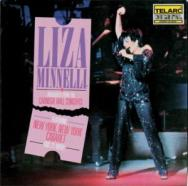 Liza Minnelli Highlights From The Carnegie Hall Co