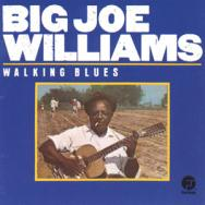 Walking Blues MP3