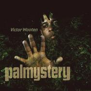 Palmystery