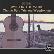 Byrd In The Wind MP3