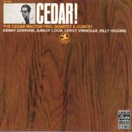 Cedar